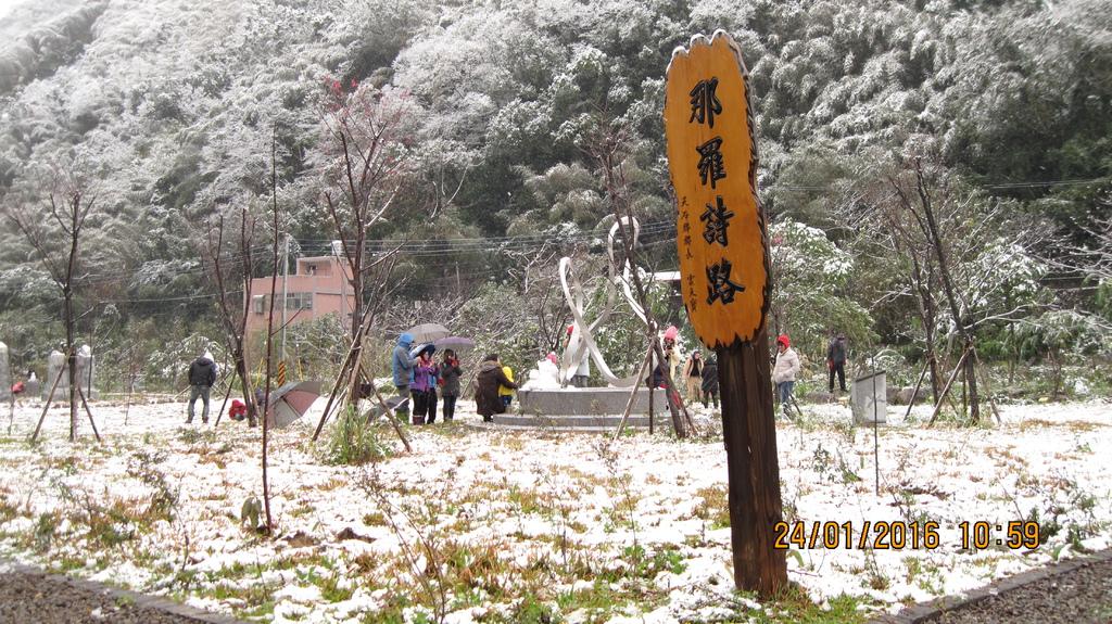 20160124 (13) 竹60道路6.2Km處 [那羅文學林 (海拔~500m)].JPG
