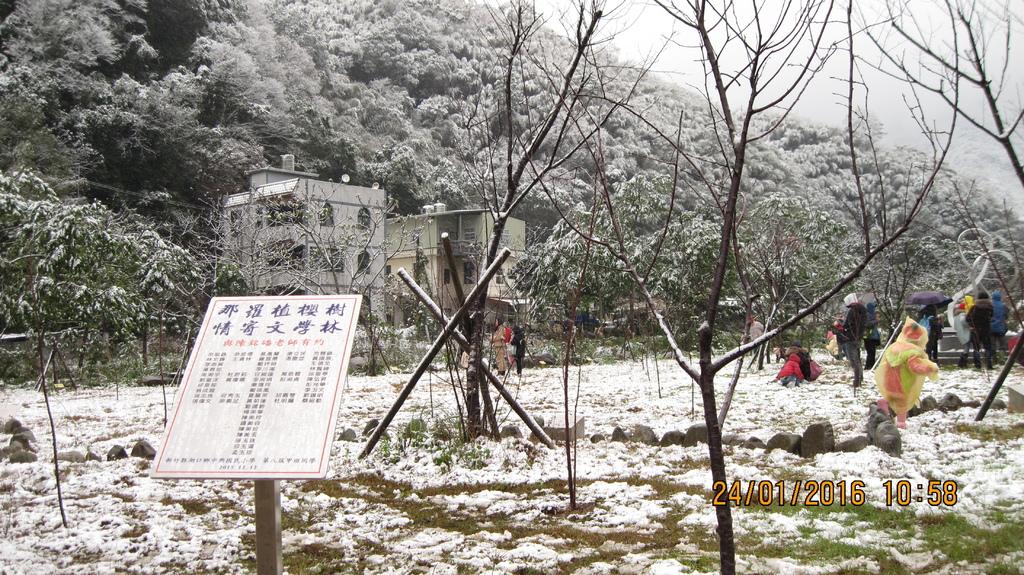 20160124 (16) 竹60道路6.2Km處 [那羅文學林 (海拔~500m)].JPG