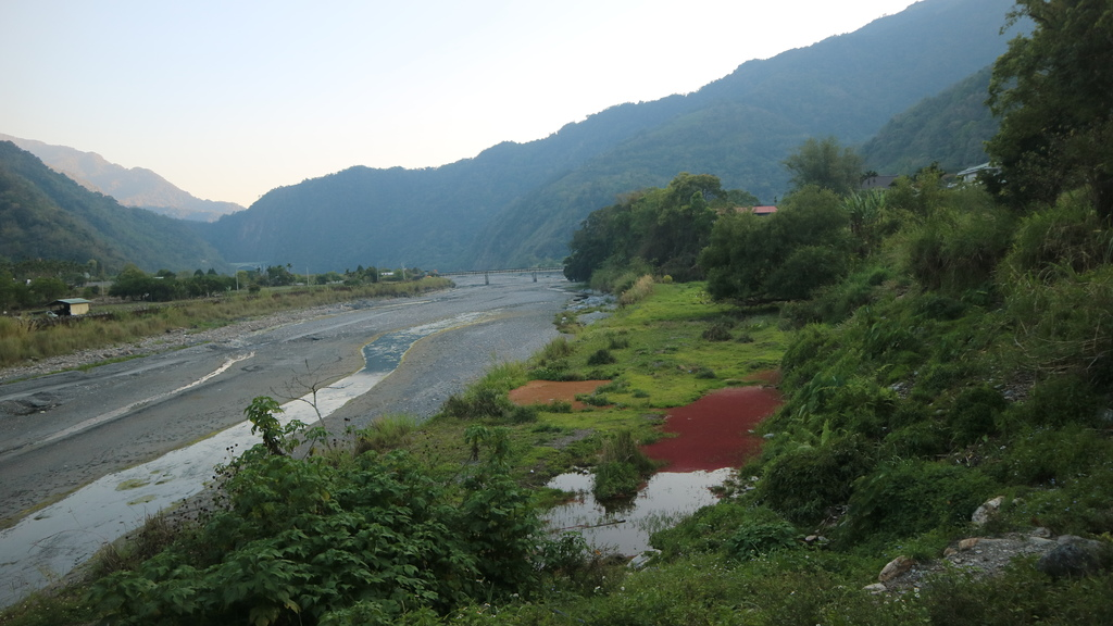 20170402 (188) 由投71縣道17.1km處眺望眺望濁水溪%26;水面的紅色蕨類.JPG