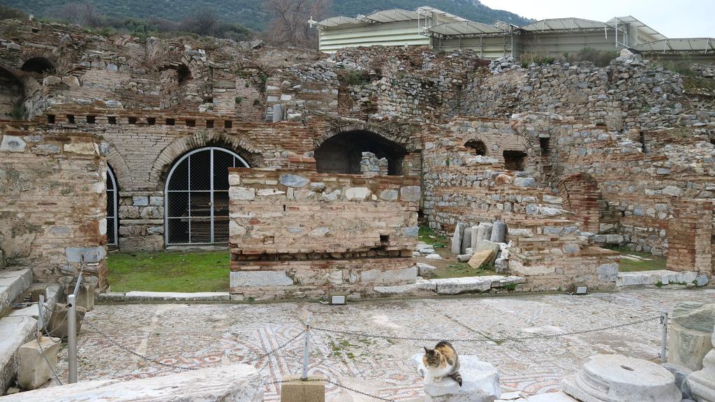 20190107 (154) 古羅馬豪宅遺蹟 [艾菲索斯(Ephesus)].JPG