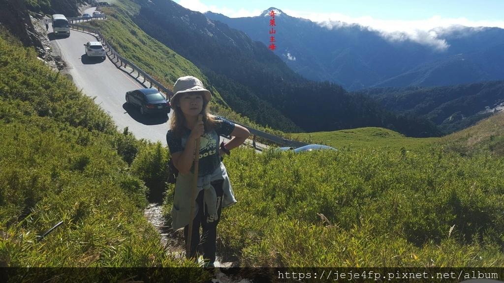 20161030 (20A) 台14甲公路30.6km處 [合歡山主峰登山步道途中].jpg