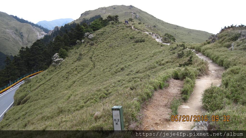 20160520 (125) 由石門山步道0.2km處往上眺望.JPG
