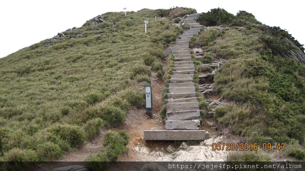 20160520 (132) 由石門山步道0.5km處往上眺望.JPG