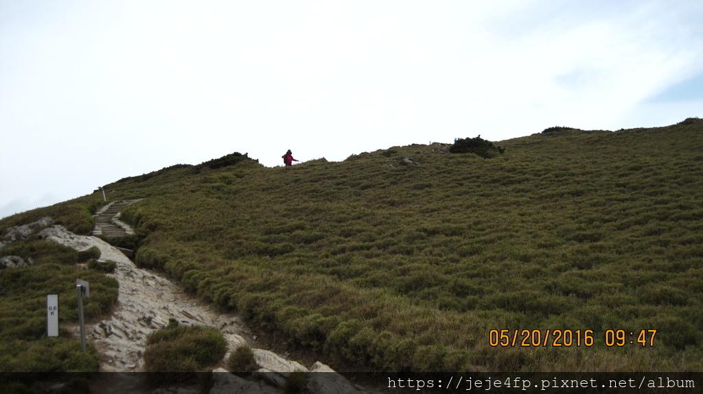 20160520 (137) 由石門山步道0.6km處往上眺望.JPG