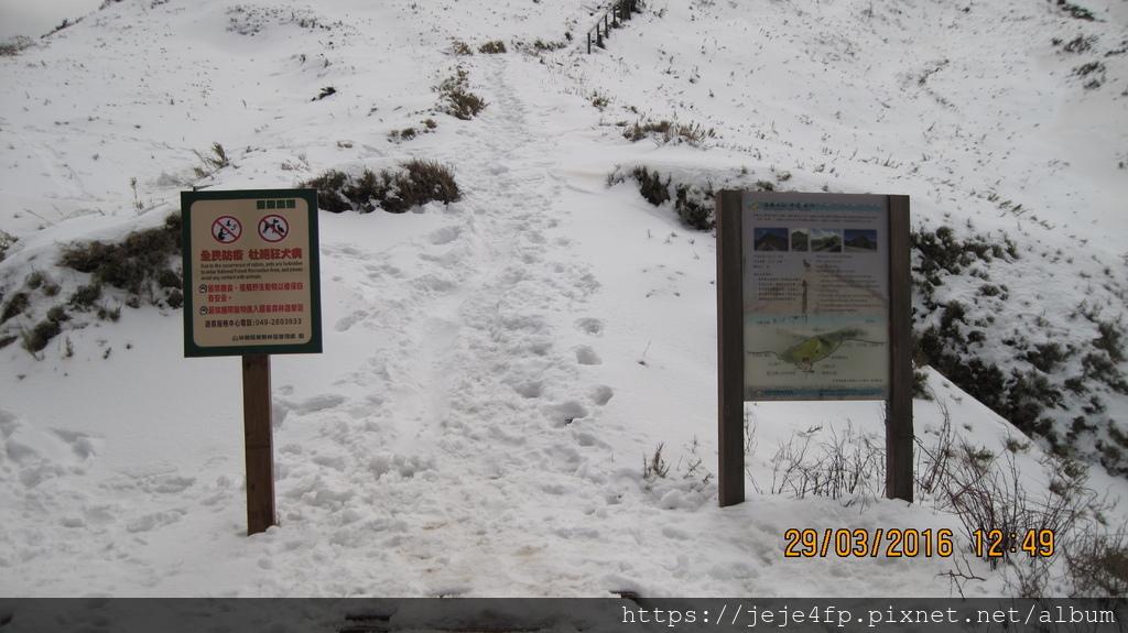 20160329 (156) 台14甲道路33.4Km [合歡尖山(北側登山口)].JPG