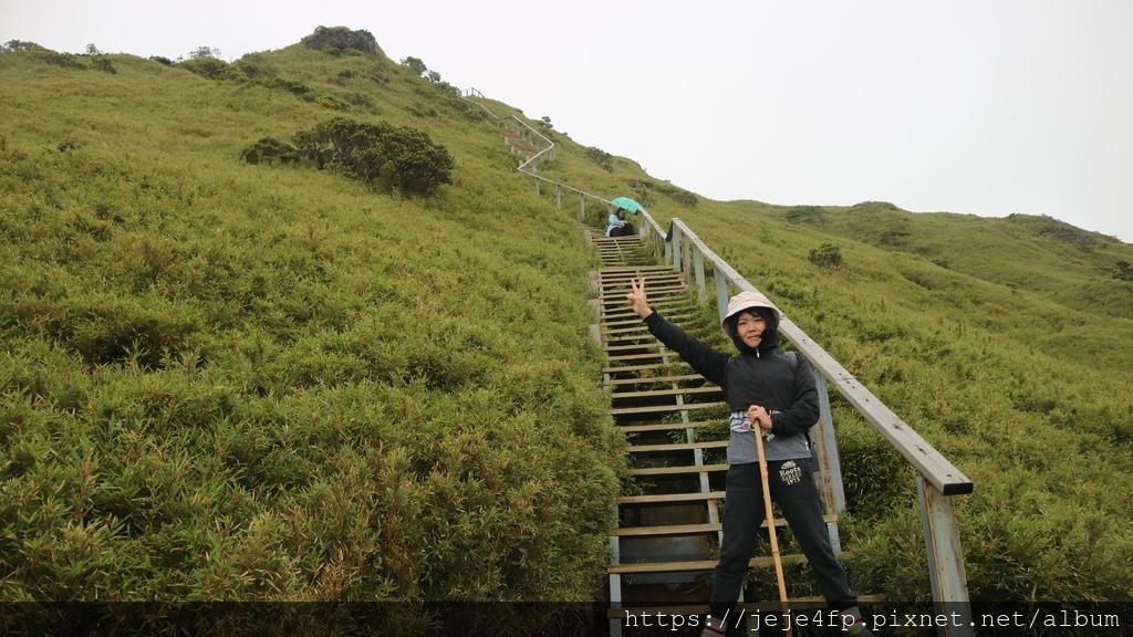 20180617 (20) 由步道的枕木階梯區域仰望合歡尖山 (H3217m).JPG
