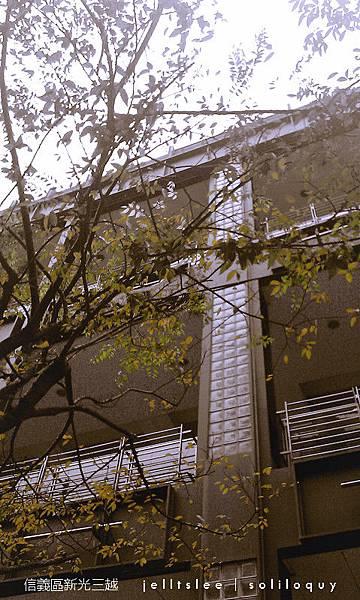 IMAG0035_副本.jpg