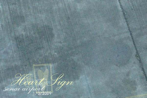IMG_0422 copy.jpg