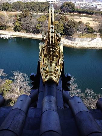 岡山城天守閣屋頂兩端的兩隻金鯱