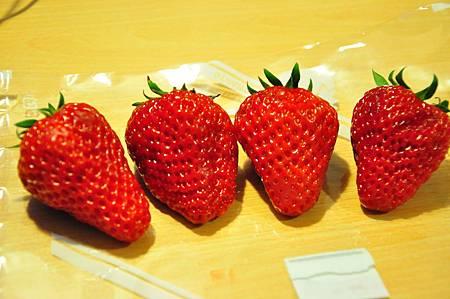 超愛吃草莓的我我跟旅伴們合買了這一盒草莓500日幣, 我花了200日幣,買到四顆!! 這草莓是不是超大顆的呢!