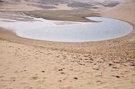 有沙漠就要有綠洲是吧?
