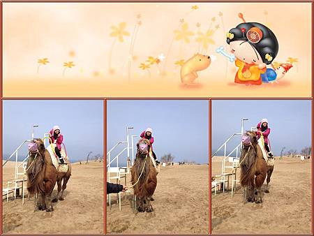 這應該是我這輩子第一次騎上駱駝,也是最一次吧