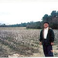 alanta-cottonfield