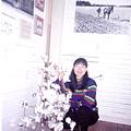 cottonmuseum-4