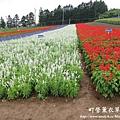 富良野-札幌canon 013