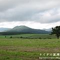 阿寒湖-上士幌町高原牧場-帶廣canon 105
