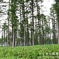 阿寒湖-上士幌町高原牧場-帶廣canon 110
