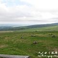 阿寒湖-上士幌町高原牧場-帶廣canon 113