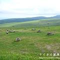 阿寒湖-上士幌町高原牧場-帶廣pana 147