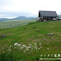 阿寒湖-上士幌町高原牧場-帶廣pana 144