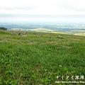 阿寒湖-上士幌町高原牧場-帶廣pana 153