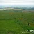 阿寒湖-上士幌町高原牧場-帶廣pana 155