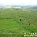 阿寒湖-上士幌町高原牧場-帶廣pana 156