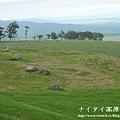 阿寒湖-上士幌町高原牧場-帶廣pana 157