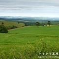 阿寒湖-上士幌町高原牧場-帶廣pana 174