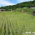 北見-網走-斜里canon 094