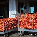 龍磐-滿州-車城D3 159