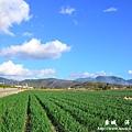 龍磐-滿州-車城D3 169