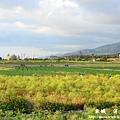 龍磐-滿州-車城D3 208