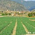 龍磐-滿州-車城D7 321