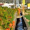 龍磐-滿州-車城D7 345