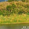 龍磐-滿州-車城D7 358