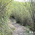 雙溪-九份nikon 090