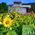 龍磐-滿州-車城D3 128