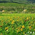 龍磐-滿州-車城D7 250