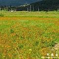 龍磐-滿州-車城D7 289