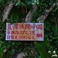 灣潭D7 007