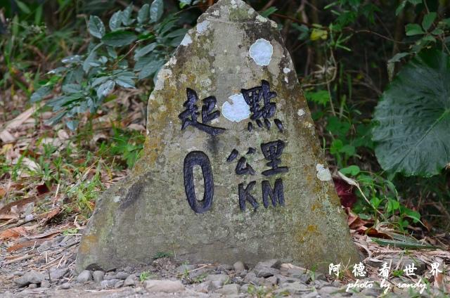 南仁湖D7 012.JPG