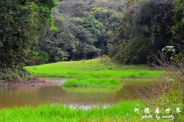 南仁湖D7 053.JPG