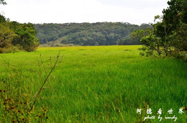 南仁湖D7 078.JPG