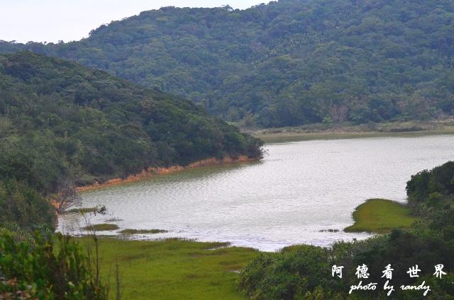 南仁湖D7 099.JPG