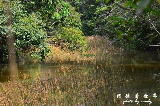 南仁湖D7 131.JPG