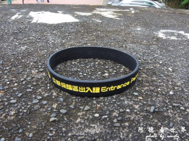 南仁湖P77 015.JPG