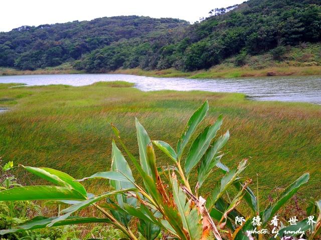 南仁湖P77 229.JPG