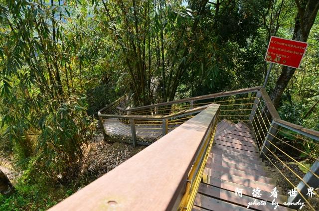 竹山梯子吊橋D7 003.JPG