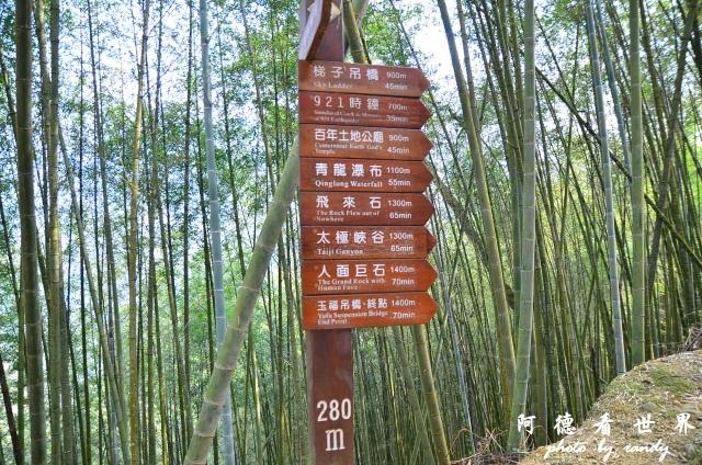 竹山梯子吊橋D7 008.JPG
